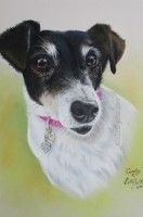 """Candy""  Pastel"