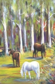 Home Paddock - For Sale $280