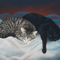 Catnaps - Pastel - For sale