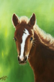 Pony for RDA - OIls