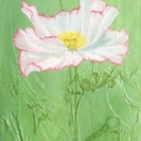 Poppy White Oils -