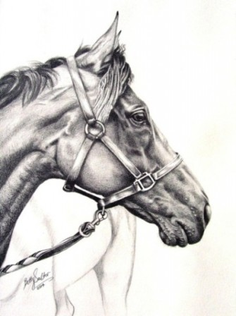 Thoroughbred_GraphiteA3_web_Mar14_020.jpg
